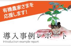有機栽培適合プラグ苗とは